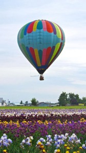 BalloonOverFields_web