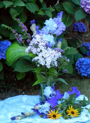 October Sky (in vase) and Best Bet (on cloth) with Phlox, Verbena, Hosta and Rudbeckia