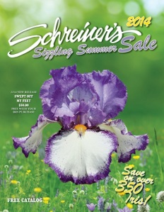 Tall Bearded Iris | Discount Iris