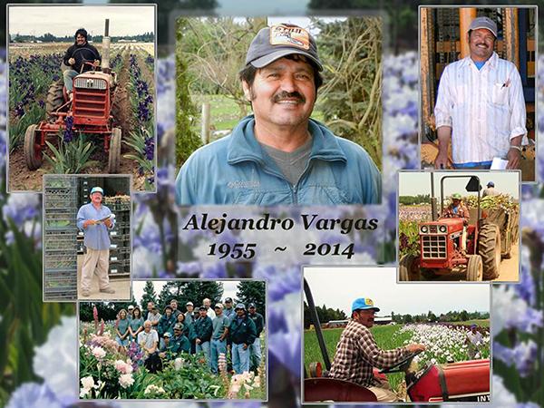 AlejandroVargas_MemorialCollage2014-web