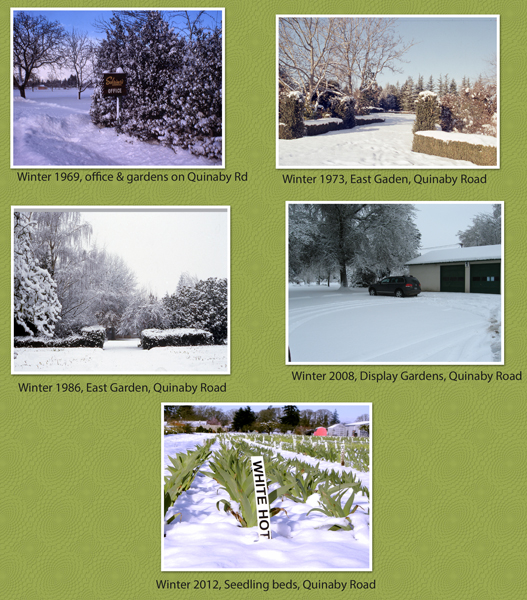 Winter-Collage-1969-2012-web