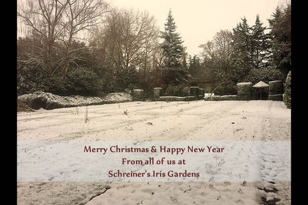 snowyeastgarden-christmasgreet2016